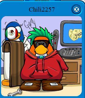 pinguino-destacado4
